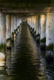 The pier in Sopot - tunnel. The pier in City Sopot - tunnel - Poland royalty free stock photo