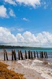 Pier stilts on beach Stock Photos