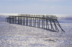 Pier at sunrise over the Gulf of Mexico, Biloxi, MS Stock Photos