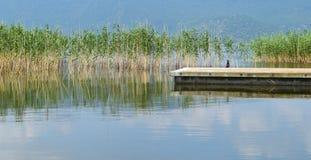 Pier und ein cormoran in den Prespes Seen Lizenzfreie Stockbilder