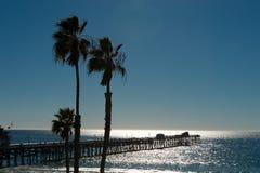 Pier- und Palmen Stockbild