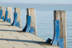 Pier Wood Piles. With Blue Steel Bracing Stock Image