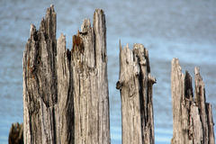The pier wooden dock with stones Royalty Free Stock Photography