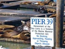 PIER39 of San Francisco Stock Photo