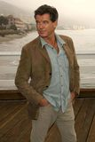 Pierce Brosnan Royalty Free Stock Image
