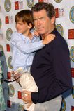 Pierce Brosnan Fotografia Stock