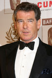 Pierce Brosnan Royalty Free Stock Photography