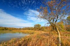 Pierce Lake Evening Sunlight Illinois Stock Images