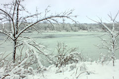 Pierce Lake Snowfall - Illinois Royalty Free Stock Image