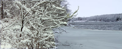Pierce Lake Snowfall - Illinois Stock Photography