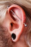 Pierced man ear, black plug tunnel, industrial and rook. Stretched lobe piercing, grunge concept. Pierced man ear with black plug tunnel. industrial and rook Royalty Free Stock Photos