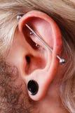 Pierced man ear, black plug tunnel, industrial and rook Royalty Free Stock Photos