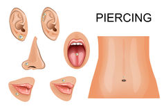 Piercing on different body parts Royalty Free Stock Image