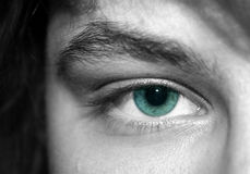 Piercing stare. Close-up of a girl's green eye Stock Photography