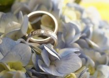 pierścionków target143_1_ Obraz Royalty Free