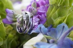 pierścionków target1437_1_ Obraz Stock