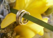 pierścionków target2116_1_ Fotografia Stock
