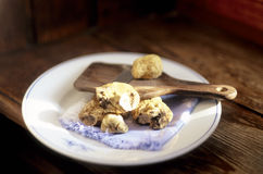 Piermont Truffle Royalty Free Stock Image