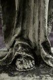 pierna Imagen de archivo libre de regalías