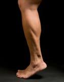 Pierna del atleta de sexo femenino Imagen de archivo libre de regalías