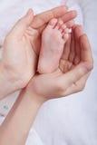 Pierna del bebé. Pierna recién nacida en mano de los padres Imágenes de archivo libres de regalías