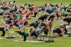 Pierna derecha del estiramiento de la gente en unísono en la clase al aire libre de la yoga Fotografía de archivo