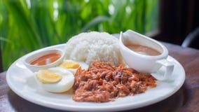 Pierna guisada del cerdo en el arroz Imagen de archivo