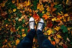 Piernas adolescentes en zapatillas de deporte en hojas de otoño Imagenes de archivo
