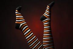 Piernas bonitas en calcetines multicolores largos foto de archivo