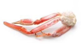 Piernas de cangrejo Imagen de archivo