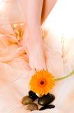 Piernas de la muchacha Foto de archivo libre de regalías