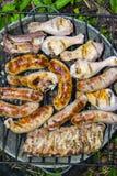 Piernas de pollo de las costillas de cerdo de las salchichas en la barbacoa de la parrilla Imagen de archivo