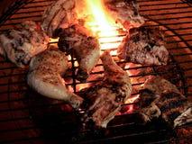 Piernas de pollo y muslos asados a la parrilla en una llama abierta Imagenes de archivo