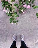 Piernas de un adolescente en el fondo de rosas y del asfalto Foto de archivo libre de regalías