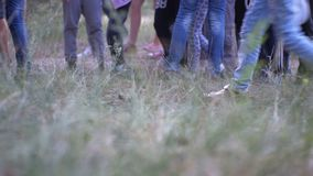 Piernas de una muchedumbre de gente que camina a lo largo de la trayectoria en el bosque por la tarde almacen de video