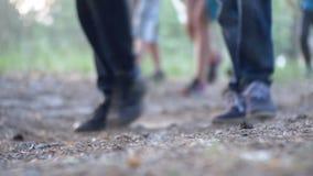Piernas de una muchedumbre de gente que camina a lo largo de la trayectoria en el bosque por la tarde metrajes