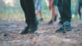 Piernas de una muchedumbre de gente que camina a lo largo de la trayectoria en el bosque por la tarde almacen de metraje de vídeo