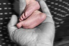 Piernas del bebé en mano del ` s del padre foto de archivo libre de regalías