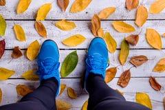Piernas del corredor Zapatos azules de los deportes Hojas de otoño coloridas Imagen de archivo