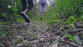 Piernas del hombre turístico y de la mujer que caminan en rastro en los pares que viajan de la selva tropical que caminan en el s almacen de metraje de vídeo