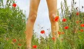 Piernas en prado floreciente Fotografía de archivo