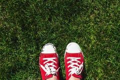 Piernas en zapatillas de deporte rojas viejas en hierba verde Visión desde arriba El co Fotografía de archivo libre de regalías