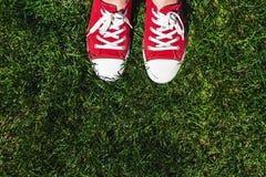 Piernas en zapatillas de deporte rojas viejas en hierba verde Visión desde arriba El co Imagen de archivo libre de regalías