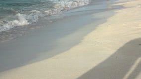 Piernas femeninas bronceadas hermosas que caminan a lo largo de la costa en ondas, solamente piernas en vídeo y sombra que mueve  almacen de video