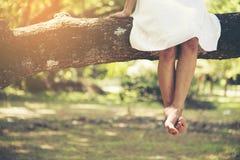 Piernas femeninas del pie desnudo que se sientan en el árbol en el parque Fotografía de archivo