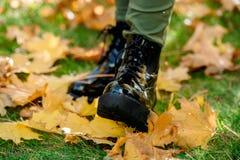 Piernas femeninas en las botas de charol negras que se colocan en una alfombra de hojas de arce caidas amarillas mientras que cam foto de archivo libre de regalías