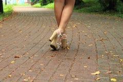 Piernas femeninas en sandalias Imágenes de archivo libres de regalías