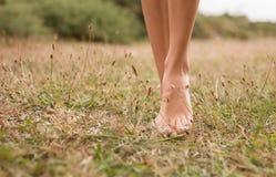Piernas femeninas jovenes que caminan en la hierba Fotografía de archivo libre de regalías