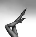 Piernas hermosas y atractivas en medias agradables Imagen de archivo