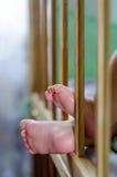 Piernas lindas del bebé del primer dos pequeñas en un pesebre detalle Foto de archivo libre de regalías